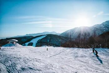 スキー・スノーボード研修会/検定会等について